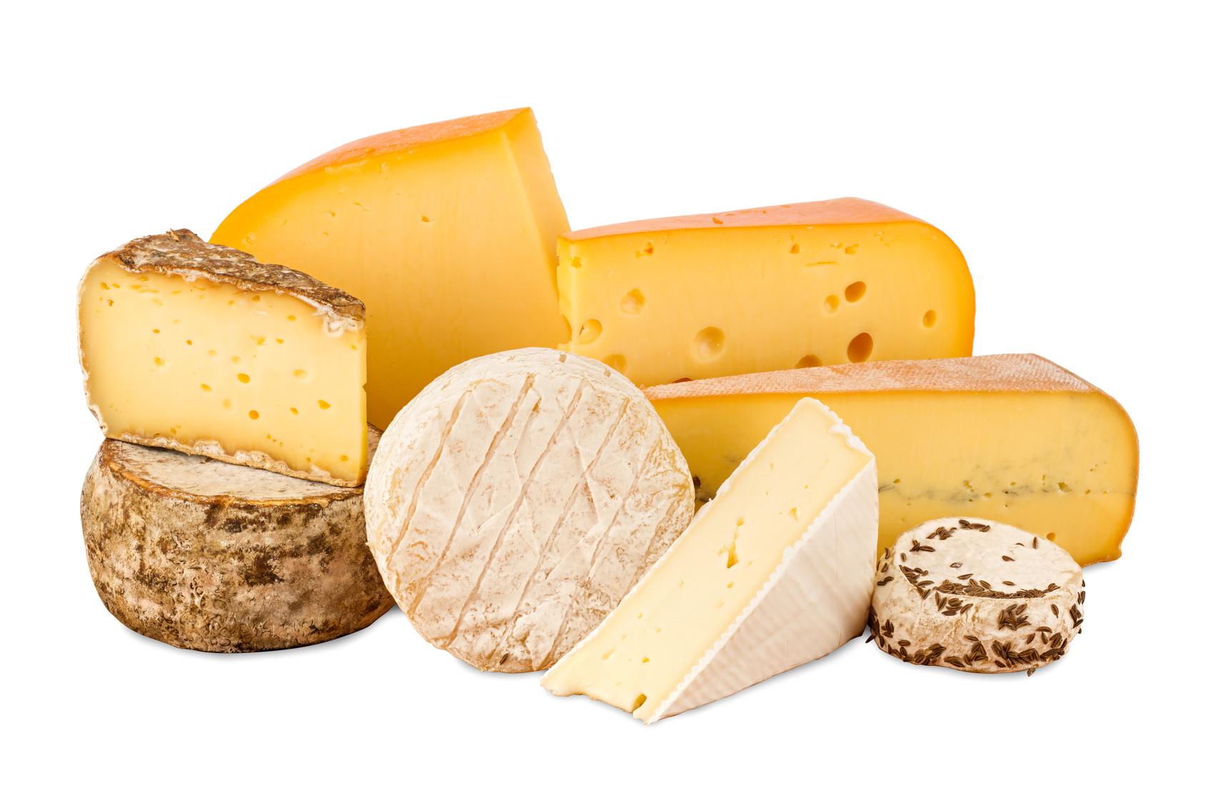 koscher käse koscher milch kosher dairy